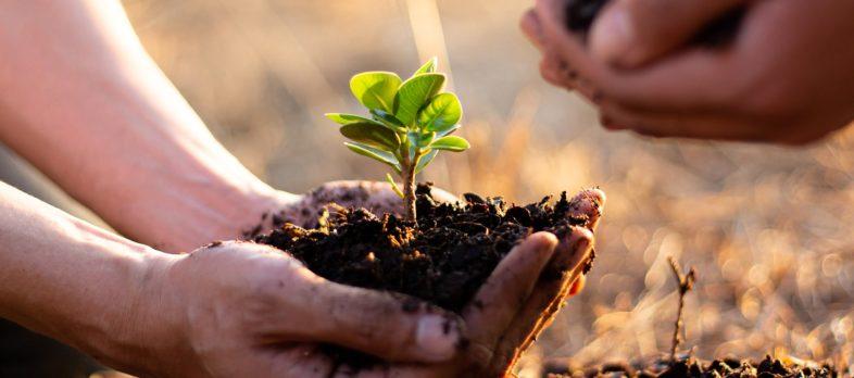 Drukarnia Interak - zrównoważony rozwój